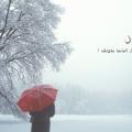 بالصور اجمل الصور عن الشتاء