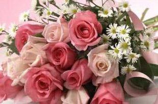 صورة اجمل كلمات عن الورد