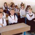 بالصور مراحل التعليم