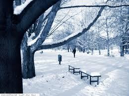 صورة اجمل الصور عن الشتاء