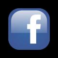 بالصور عمل تصويت على الفيس بوك
