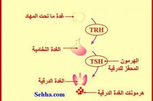 صورة نقص هرمون الثيروكثين