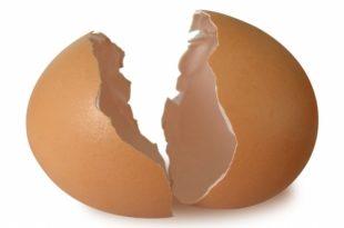 صورة فوائد قشر البيض للطول