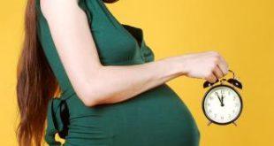 صورة علاج تاخر الحمل بالاعشاب
