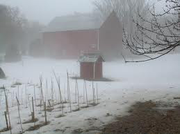 صور دفئ الشتاء