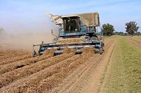 صورة دور الزراعة في التنمية الاقتصادية