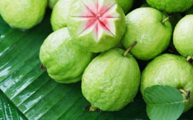 صور الجوافة للحامل