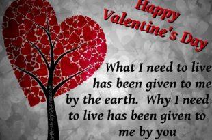 صورة رسائل بمناسبة عيد الحب