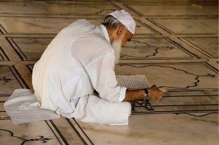 صورة الشيخ الكبير في المنام