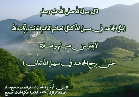 صورة الشهداء في الاسلام