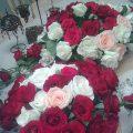 بالصور ورود وزهور رائعة