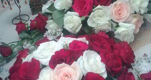 ورود وزهور رائعة