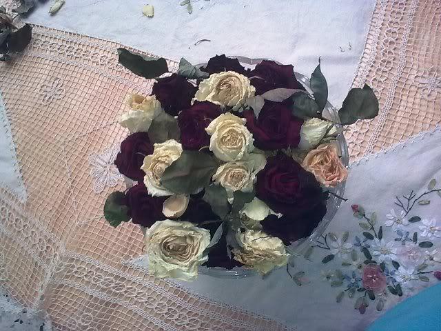 صورة ورود وزهور رائعة