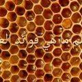 بالصور فوائد عسل السدر للبشرة