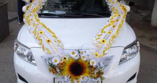 صورة تزيين سيارات الاعراس