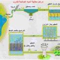 بالصور موضوع عن معالجة المياه