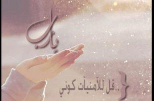 صورة احبك يارب