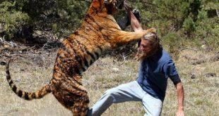 صور حيوانات متوحشه تهاجم البشر
