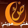 بالصور جمل باللغة العربية الفصحى
