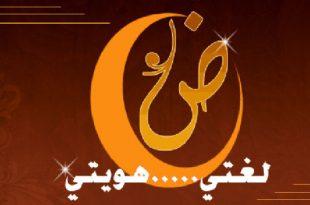 صورة جمل باللغة العربية الفصحى