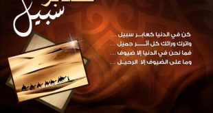 صورة مواعظ نبيل العوضي