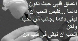 اجمل كلمات في الحب