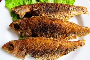 صورة تفسير حلم اكل السمك المقلي