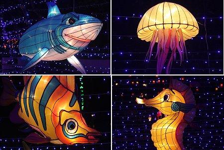 بالصور مهرجان المصابيح فِي تايلاند
