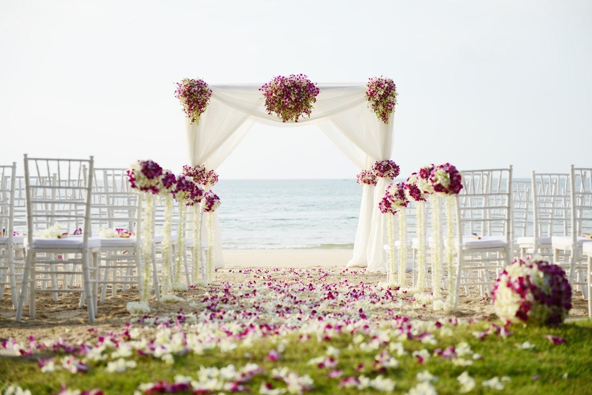 صور تفسير العرس في الحلم