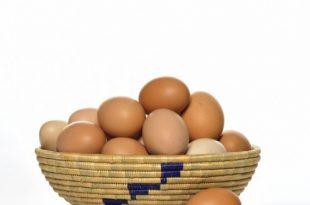 صورة تفسير حلم اكل البيض المقلي