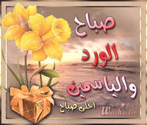 صورة صباح الورد والياسمين