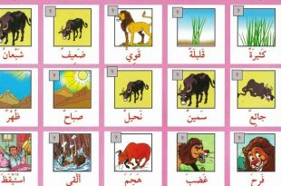 صورة كتب تعليمية للاطفال تحميل