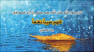 صورة اسماء المطر الصحيحه