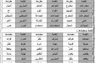 بالصور شرح الكلمات العربية 20160818 5165 1 310x205