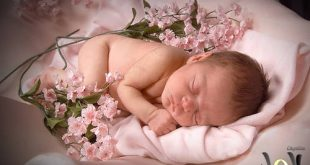 صور افكار لتزيين سرير المولود
