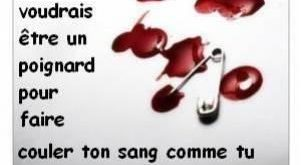 صورة اشعار بالفرنسية عن الصداقة