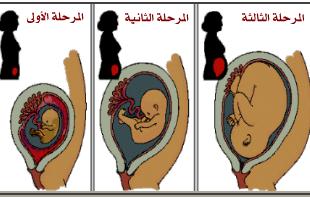 صورة اعراض الحمل في اول اسبوع