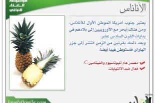 صورة فوائد الخضر والفواكه