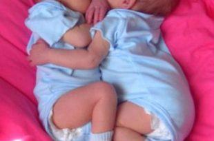 صورة الحمل بتوام ذكور