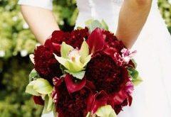 صورة تجهيز العروس قبل الزواج