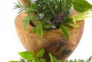 صورة علاج العقم عند الرجال بالاعشاب