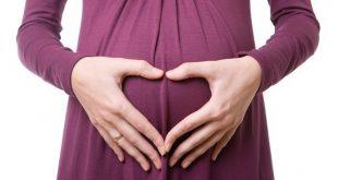 صورة المكسرات والحمل