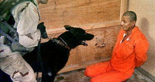 صورة صور سجناء ابو غريب