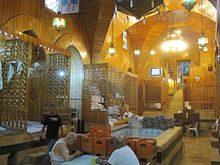 صورة الحمام العربي