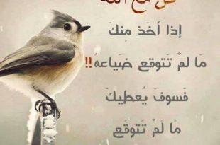 صورة كلمات جميلة في حب الله