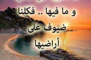 صورة كلام جميل facebook