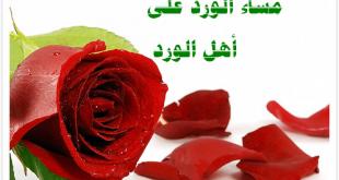 صورة مساء الود