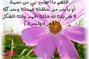 صورة اغاني دينية اسلامية
