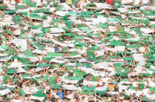 صورة اجمل جمهور في الجزائر