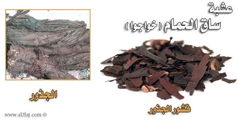 صورة زيت خواجوا للشعر